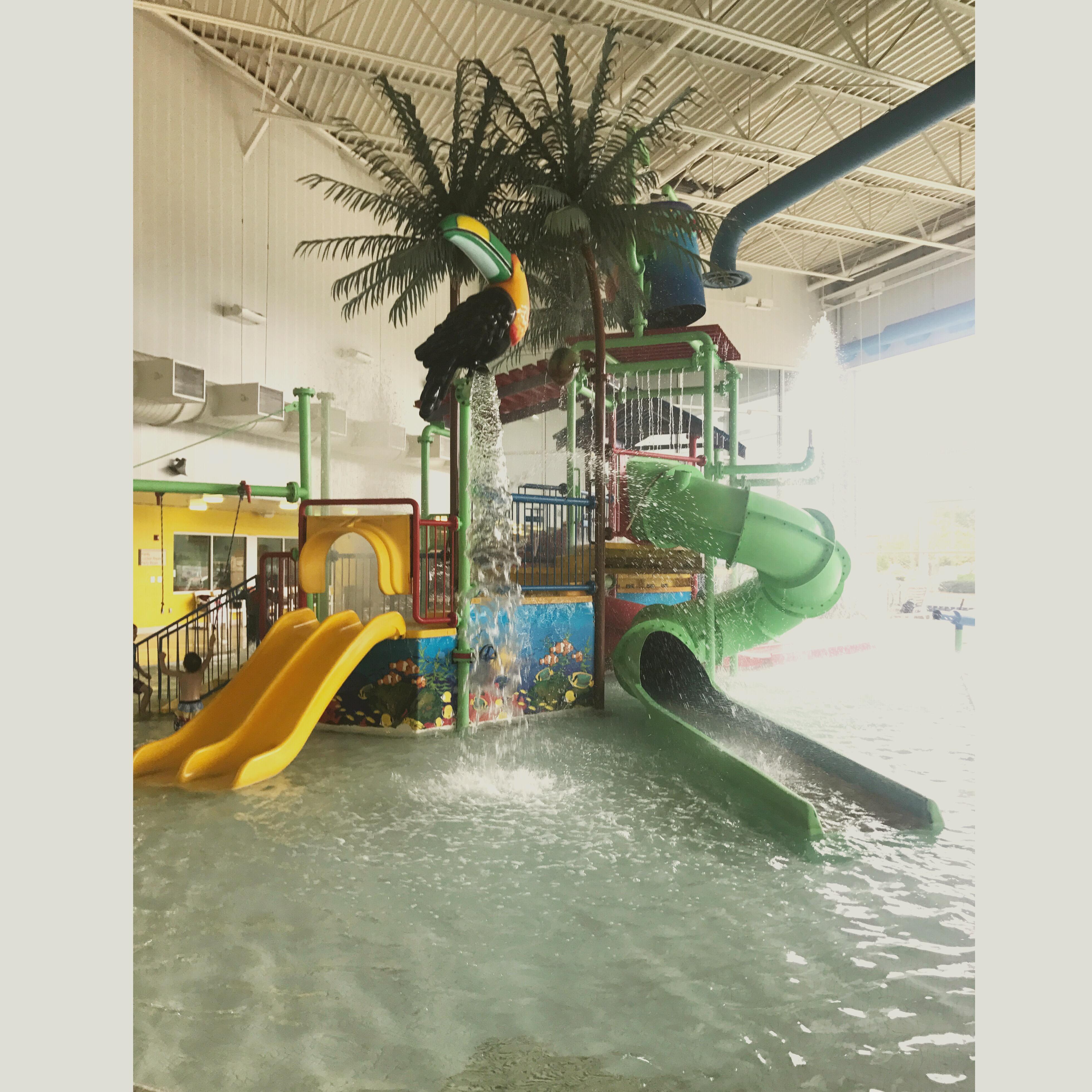 Warren community center indoor water park fall and winter birthday venue detroit mommies for Winter garden recreation center